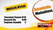 Tuzla Anadolu Mahallesi 31 Mart 2019 yerel seçimleri meclis üyesi oy dağılımı…