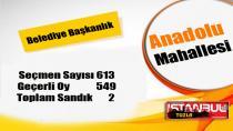 Tuzla Belediye Başkanlığı 31 Mart 2019 Yerel Seçim Sonuçları Anadolu Mahallesi...